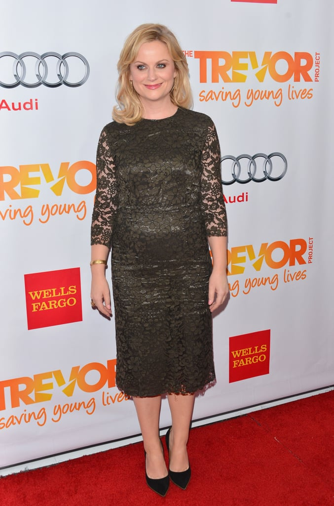 Amy Poehler posed in a black lace dress on the red carpet in LA.