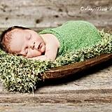 The Grass Is Always Greener . . .