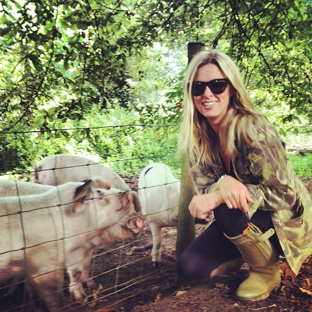 Nicky Hilton spent quality time with pigs during a visit to an English farm. Source: Instagram user nickyhilton