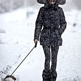 On Monday, Olivia Palermo braved a snowstorm to walk her dog in NYC.