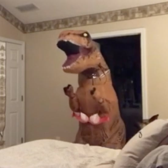 Woman Surprises Husband in Dinosaur Costume on Valentine's