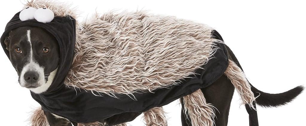 Funny Tarantula Dog Costume For Halloween