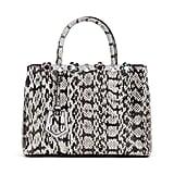 Fendi 2Jours Petite Snakeskin Tote Bag, Gray/White ($4,750)