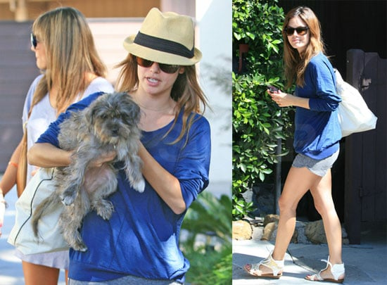 Photos of Rachel Bilson With Her Dog, Heading to Burbank Airport