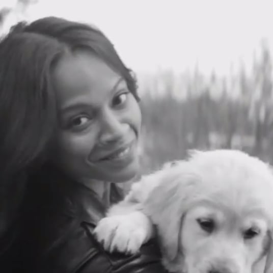 Zoe Saldana For Stuart Weitzman Video