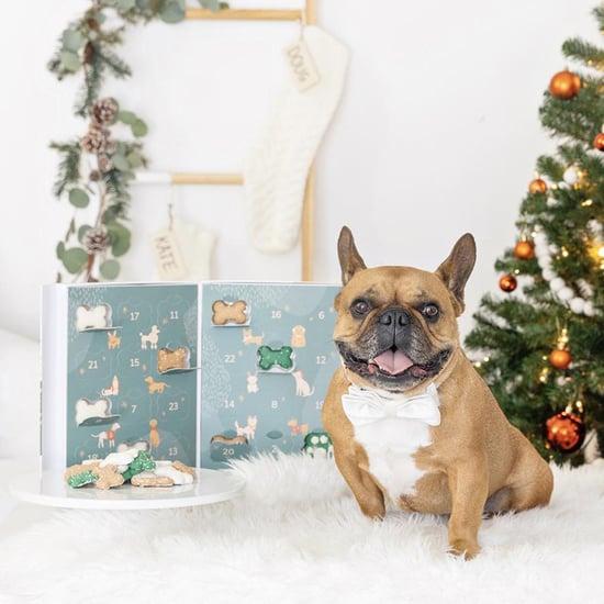 Best Dog and Cat Advent Calendars 2021