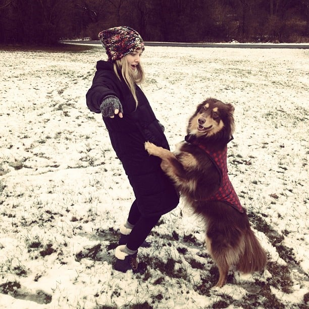 They Frolic in the Snow