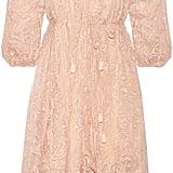 Zimmermann Henna Asymmetric Embroidered Silk Dress ($850)