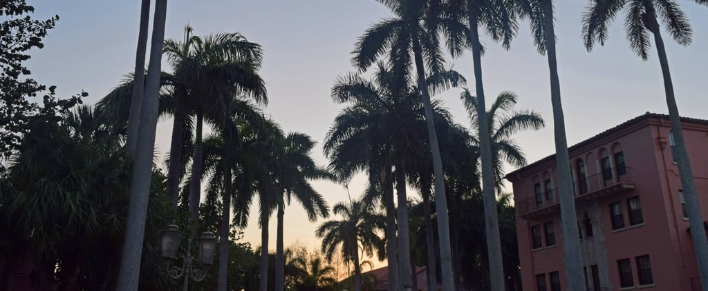 Reasons to Go to Palm Beach, FL
