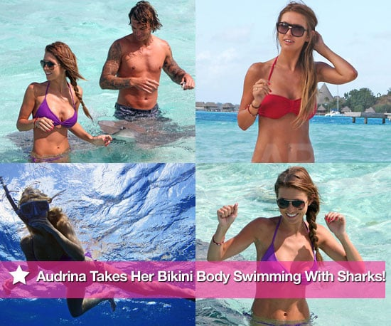Pictures of Audrina Taking Her Bikini Body Swimming With Sharks