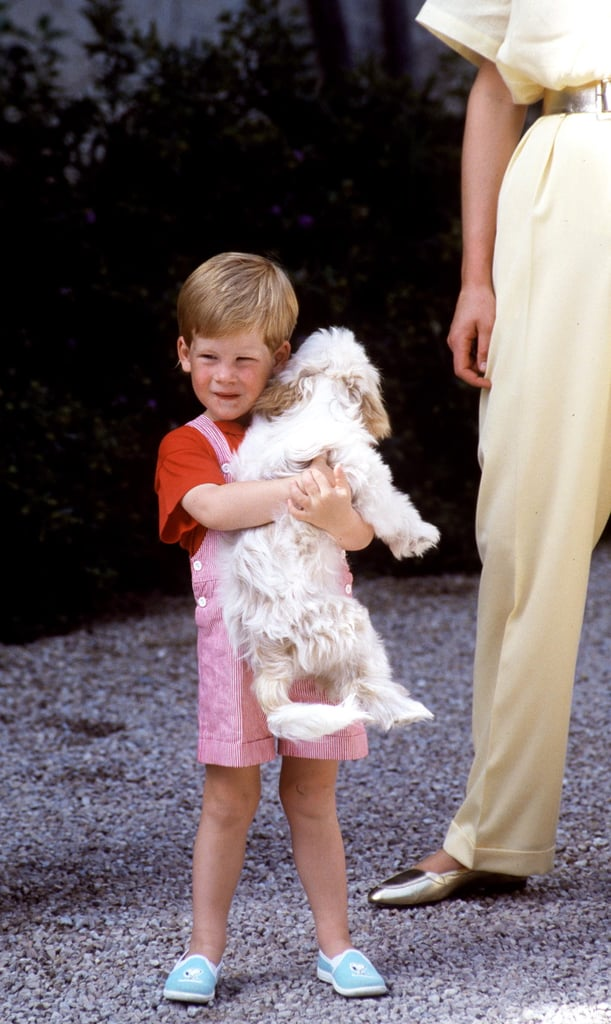 1980s: Harry