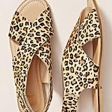 Maruti Cross-Strap SIingback Sandals