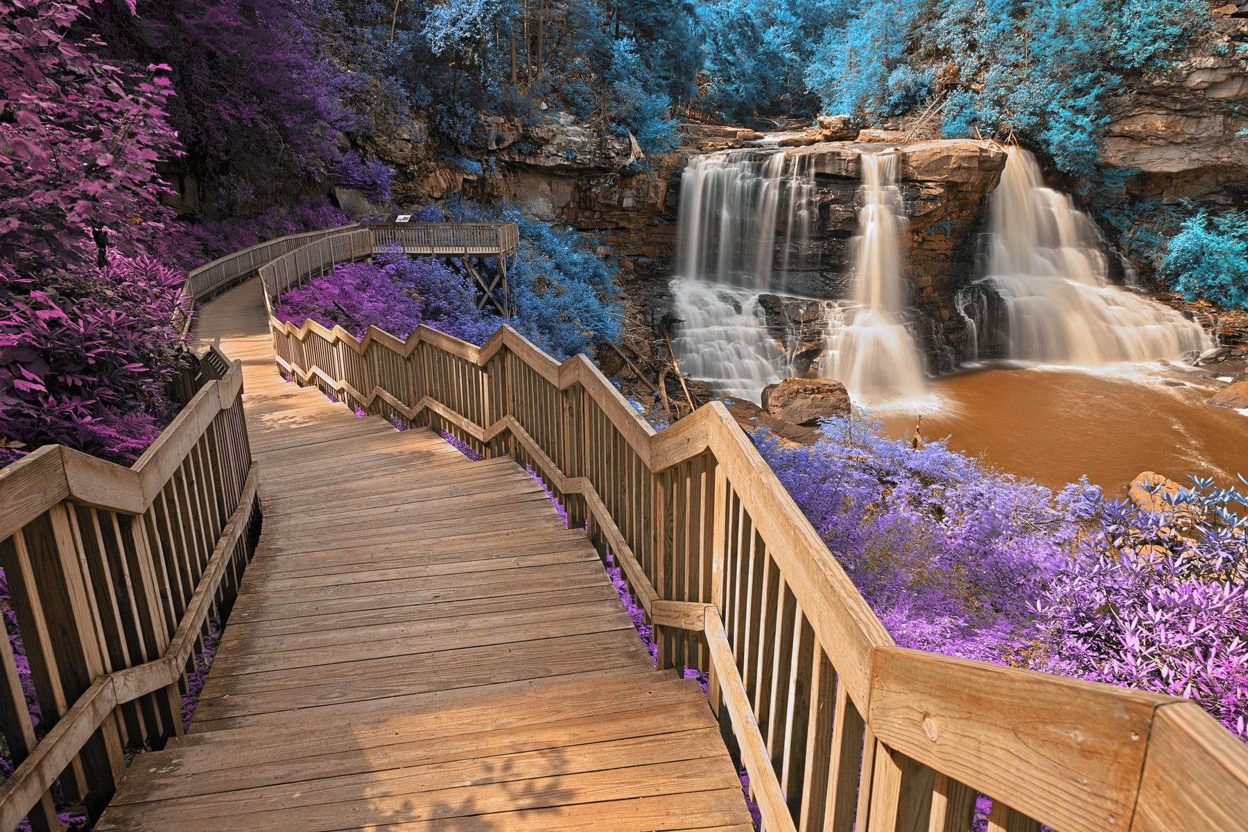 Blackwater Falls State Park >> Blackwater Falls State Park Wv The Great American Travel Bucket