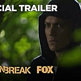 The Second Trailer Is Even Better