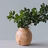Luca Mango Wood Vase