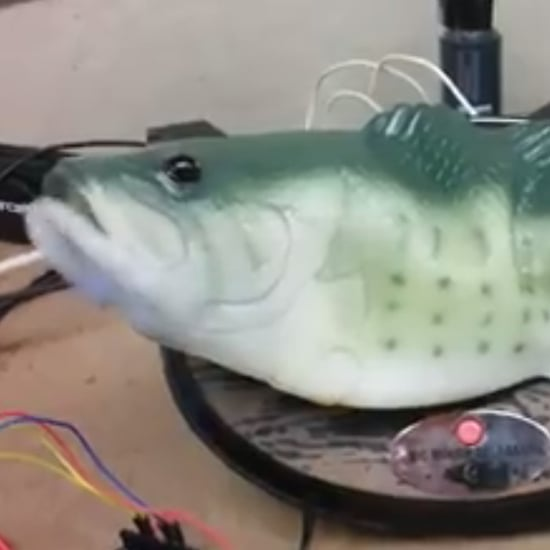 Alexa Big Mouth Billy Bass Hack Video
