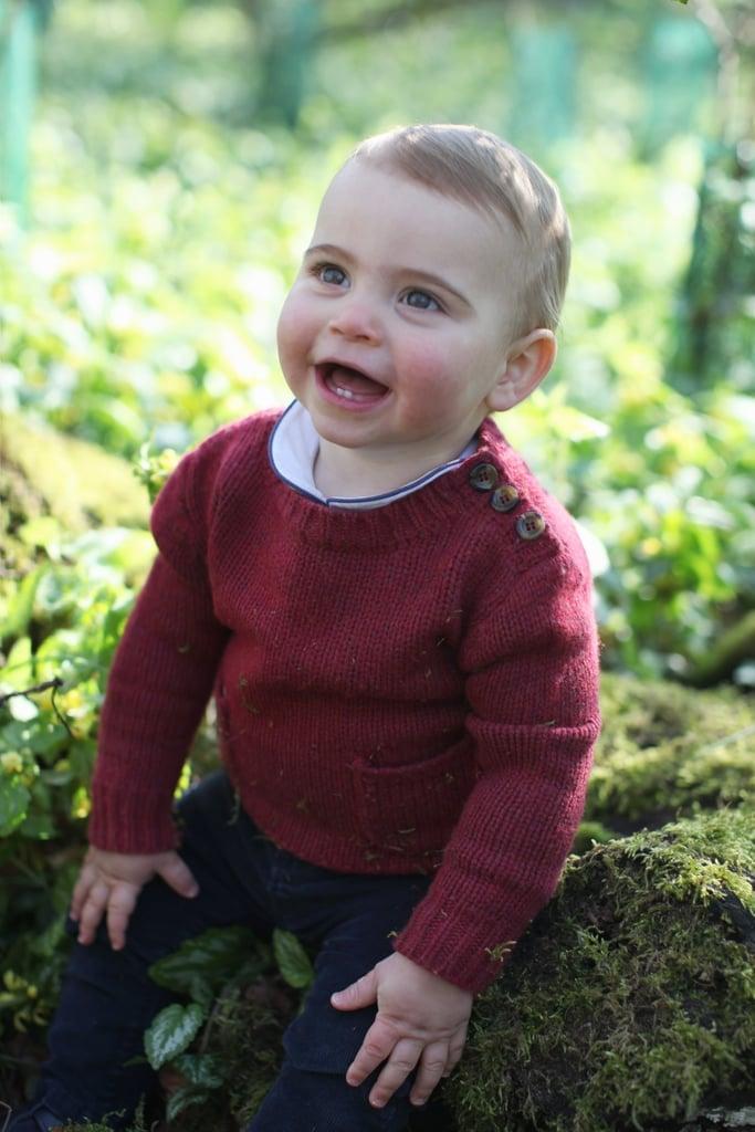 The Snugglebug: Prince Louis