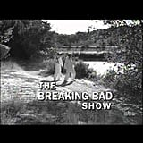 The Breaking Bad Show