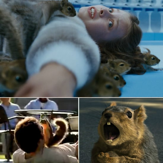 Observe Squirrel Appreciation Day With These Squirrelly Videos