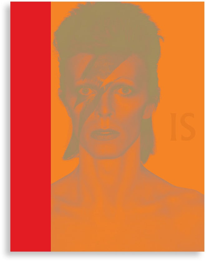 V&A David Bowie Is Book (£35)
