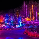 Gardens Aglow at the Coastal Maine Botanical Garden in Boothbay, ME
