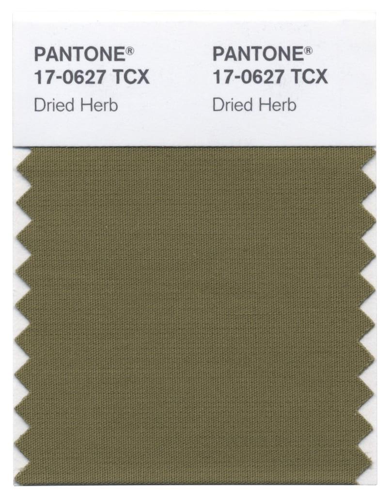 Pantone winter 2015 colours popsugar fashion australia Sage green pantone