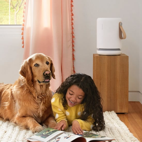 Best and Top-Rated Air Purifiers 2020