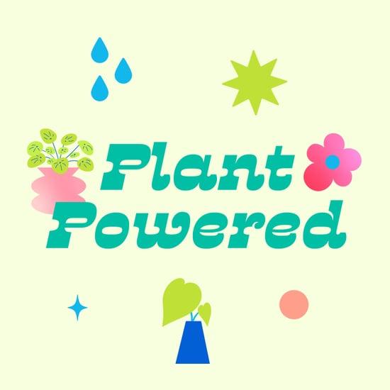 Best Houseplant Advice and Plant Decor Inspiration | 2021