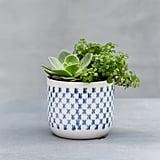 Nordic-Print Ceramic Pot