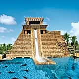 Slide Down the Atlantis Slide in the Bahamas