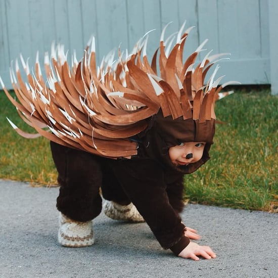 DIY Toddler Porcupine Costume For Less Than $5