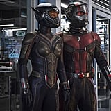 What Is the Relationship Between Ant-Man and the Wasp?