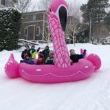 Kids Snow Sledding in Flamingo Pool Float Video