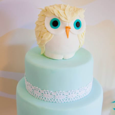 Owl-Themed Baby Shower
