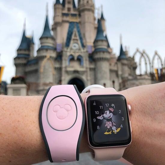 Disney Millennial Pink MagicBand