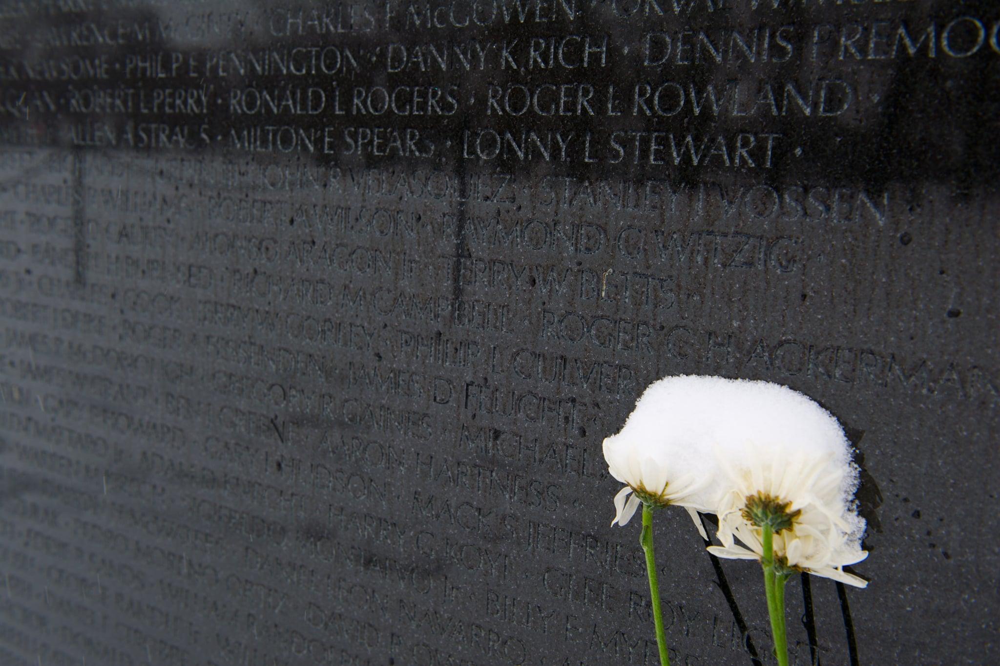 Flowers beside the Vietnam Veterans Memorial were covered in snow.