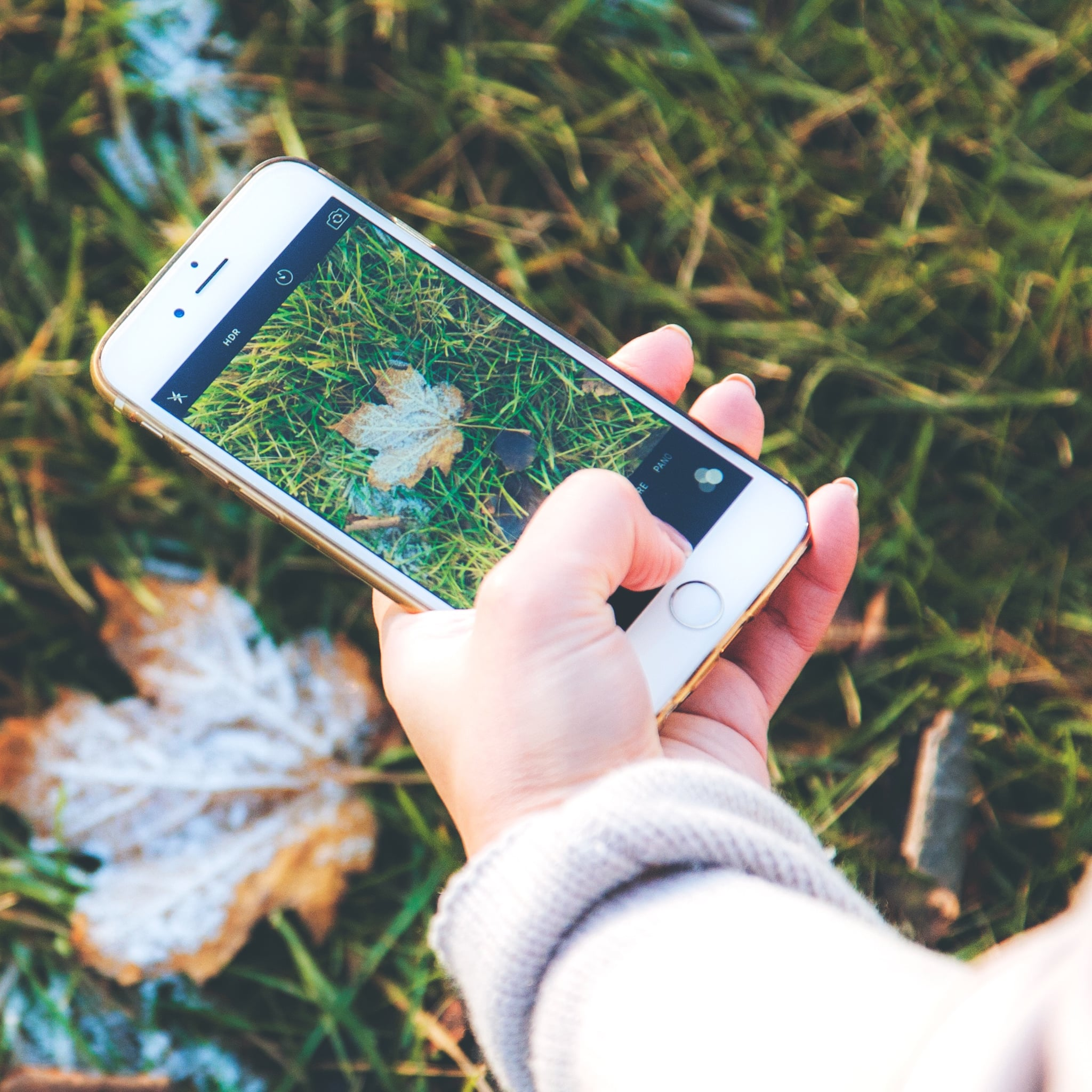 20 Cozy Fall Wallpapers For Your iPhone | POPSUGAR Tech