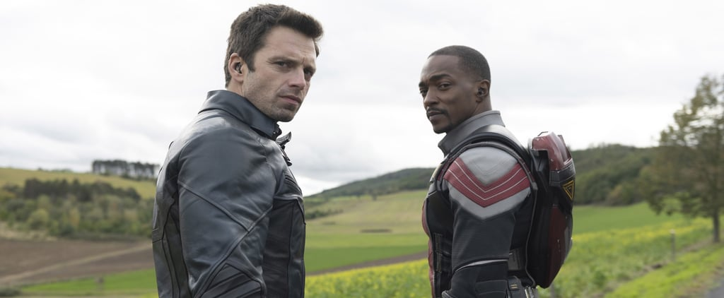 Anthony Mackie's Quotes About Sam and Bucky's Bromance