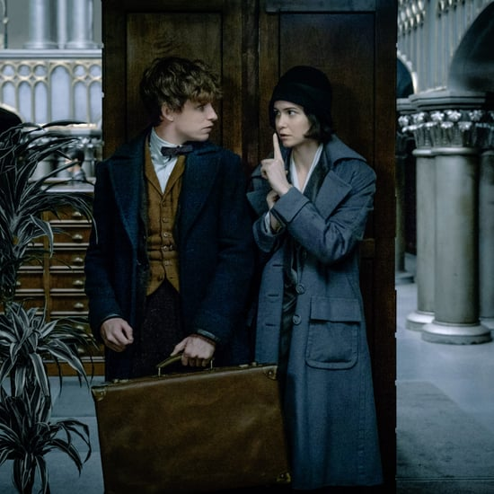 Will Harry Potter Fans Like the Fantastic Beasts Movie?