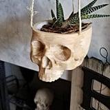 Hanging Skull Planter