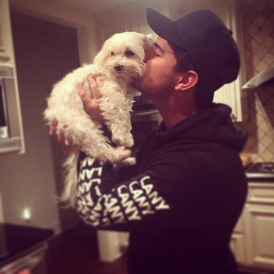 Taylor Lautner's Dog Roxy Dies
