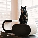 P.L.A.Y. The Arty Cat Scratcher