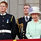 In 2005, Prince Harry, his uncle the Duke of York, and Queen Elizabeth II watched a flyover commemorating the 60th anniversary of the end of World War II.