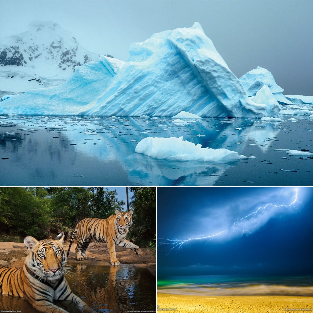 Computer Wallpaper Com: National Geographic Desktop Wallpapers