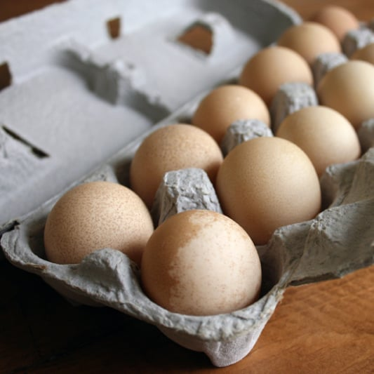 What Do Guinea Fowl Eggs Taste Like?