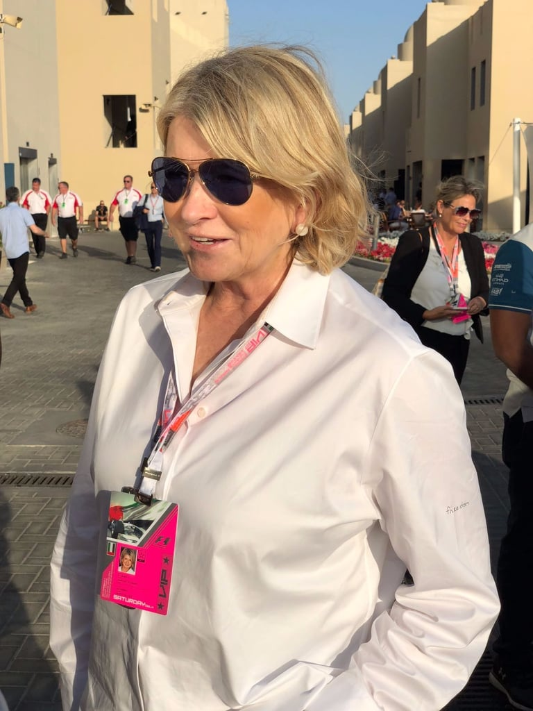 Celebrities at Abu Dhabi Grand Prix 2017