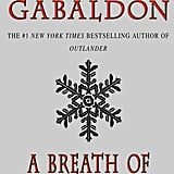 A Breath of Snow and Ashes (Book 6)