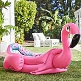 Fancy Flamingo Pool