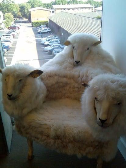 Weird Furniture: Things That Make You Go Ew(e)