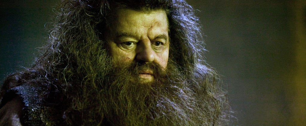 A New Harry Potter Theory Suggests Hagrid Is More Powerful Than You Thought